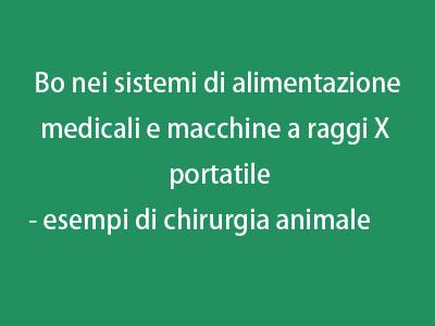 Bo nei sistemi di alimentazione medicali e macchine a raggi X portatile - esempi di chirurgia animale